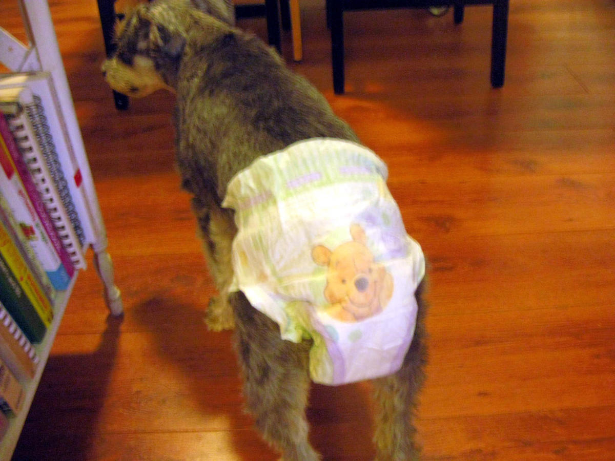 A diaper decorated with Pooh Bear!