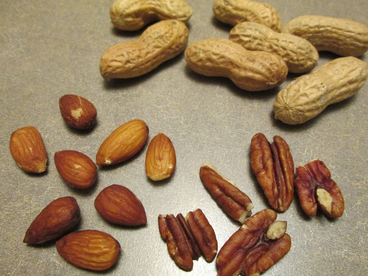 Parakeets can eat a variety of nuts. They can be ground or chopped up finely and added to a parakeet's seed/pellet mix