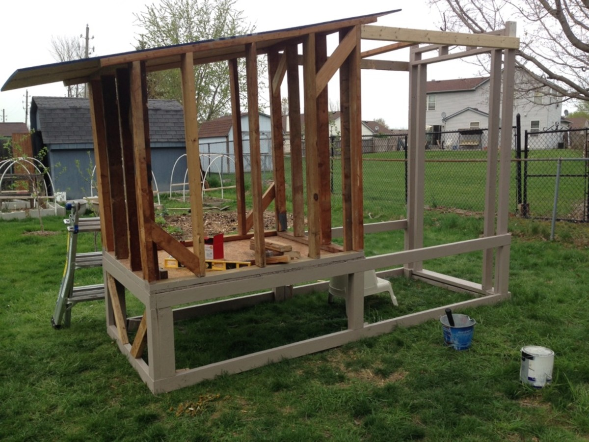 To save time, I started priming and painting the frame of the coop while my husband and father constructed the actual hen house.