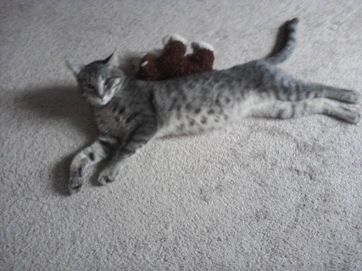 Posey having a stretch