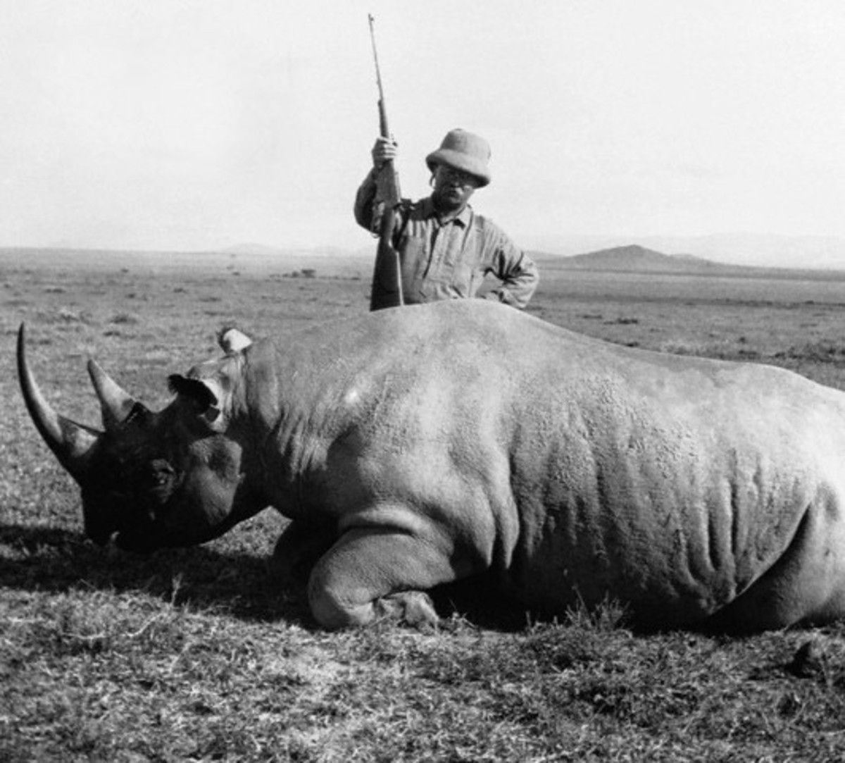 Name Your Girl Teddy for Big Game Hunter Teddy Roosevelt