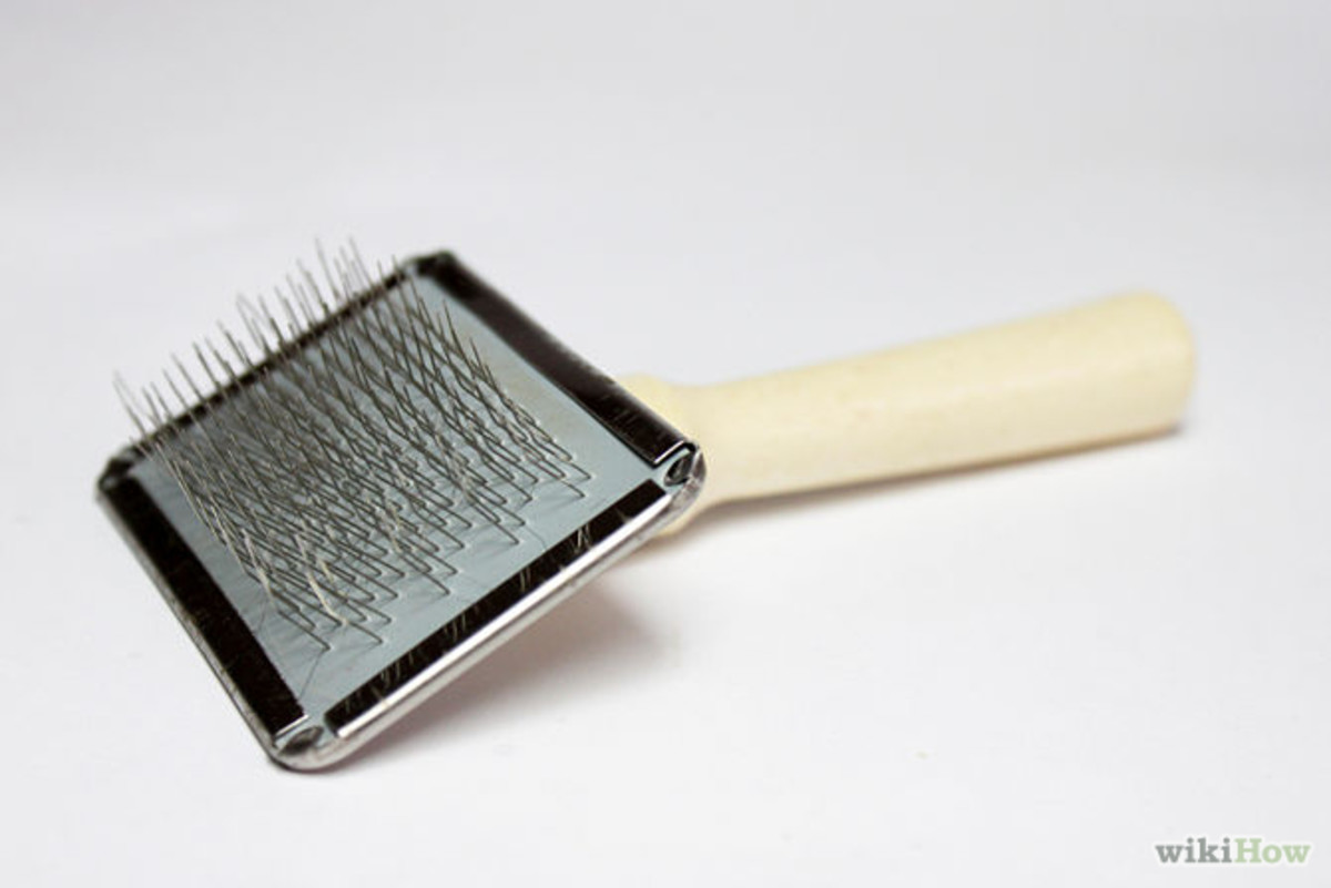 Wheaten Terriers need a brush that has the ability to comb out mats.  This type of brush with the tiny metal and flexible prongs are definitely best for de-matting your Wheaten.