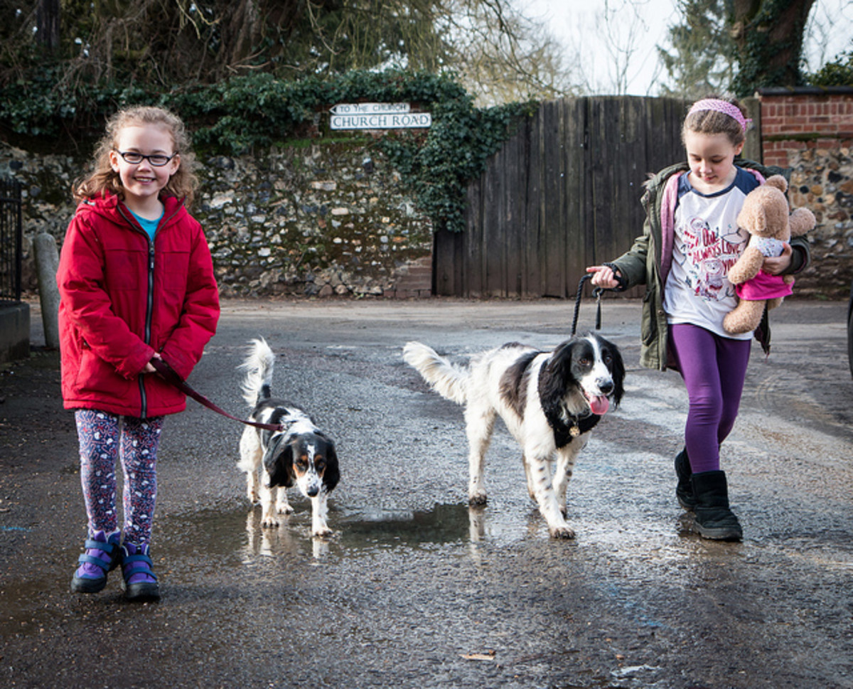 Kids walking their dogs.