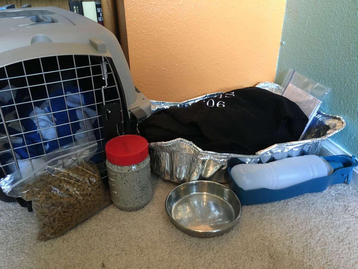 Example of supplies needed for a cat: travel carrier, food (including wet canned food), food and water dishes, blankets, disposable litter box, litter, and official paperwork kept in a sealed baggie.