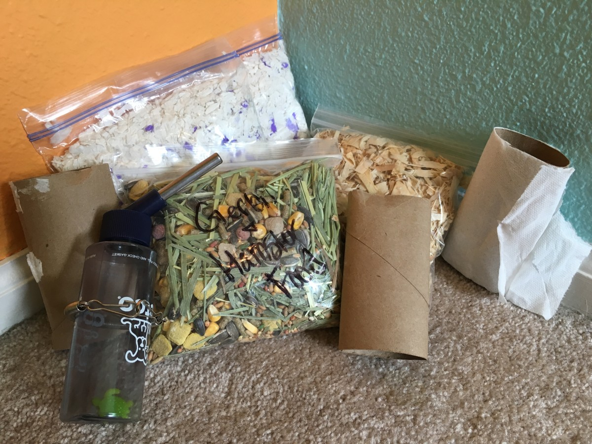 Example of supplies for a hamster or gerbil. Pictured are two bags of different types of bedding, water bottle, chewable toilet paper rolls, and a bag of food mixed with Timothy hay. Travel cage is the only other thing needed. Treats and chew sticks