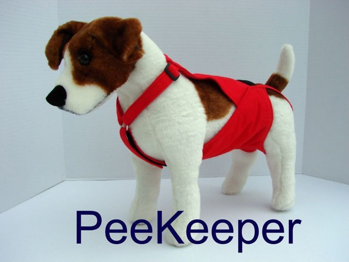 PeeKeeper Escape Proof Dog Diaper