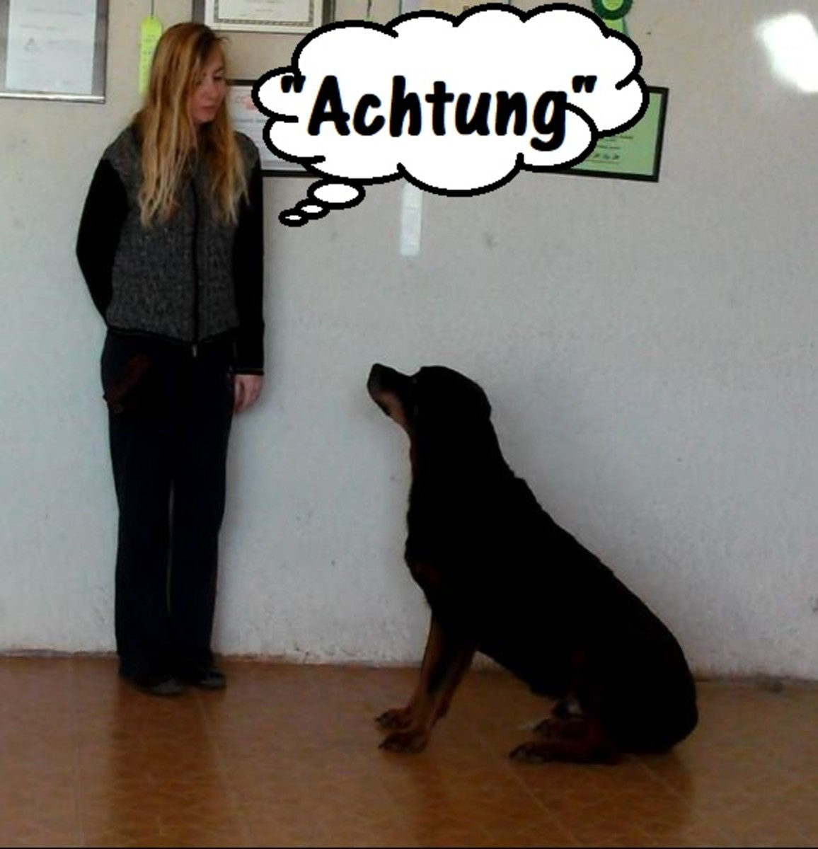 """""""Achtung"""" means """"watch."""""""