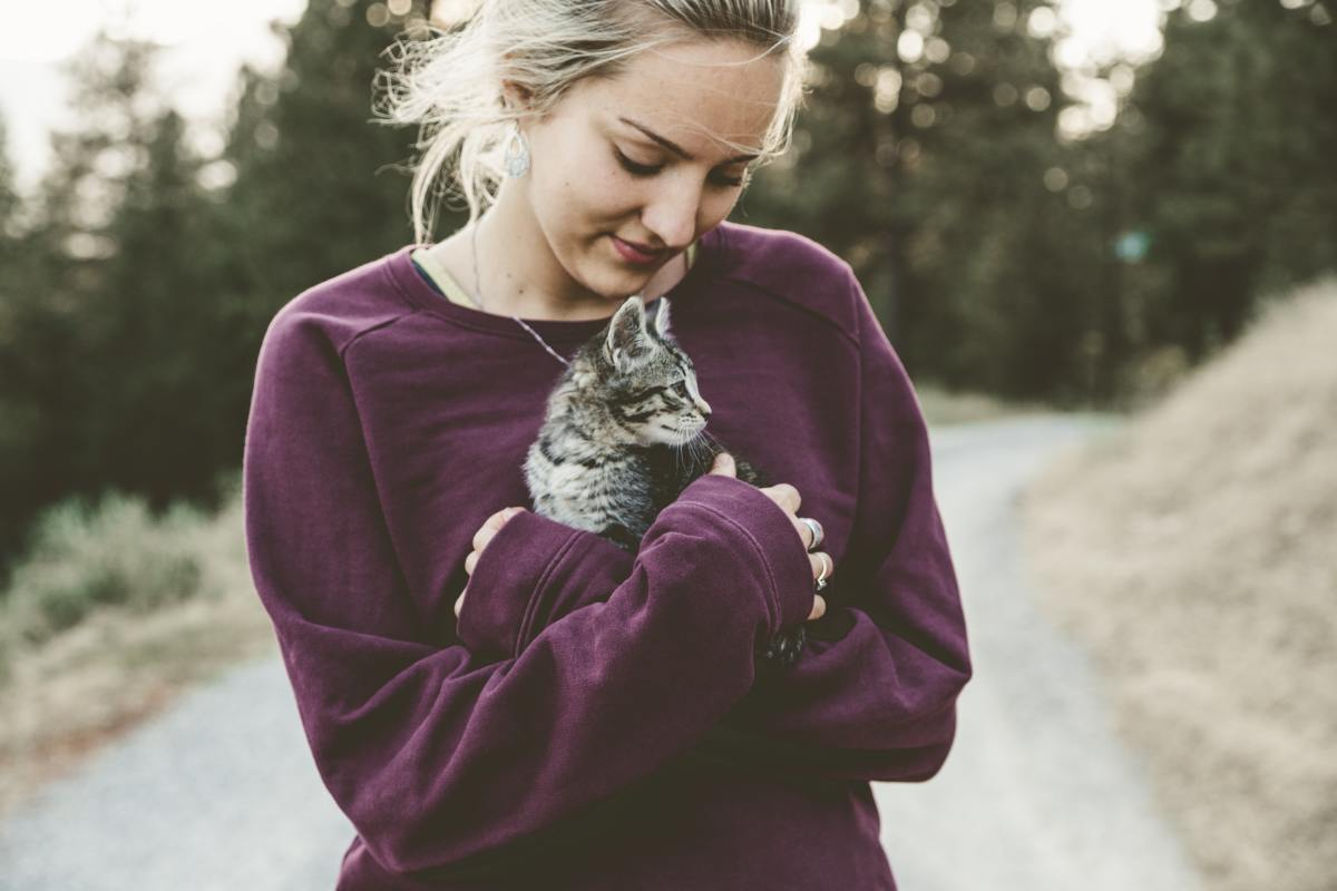 5-signs-that-your-cat-loves-you