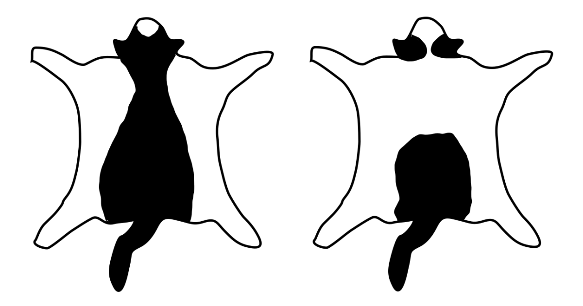 Left: mask-and-mantle pattern. Right: cap-and-saddle pattern.