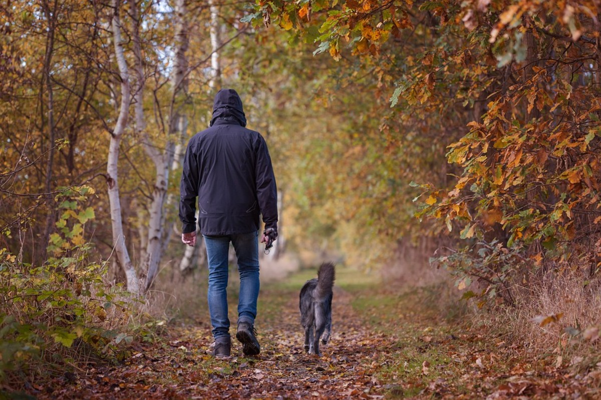 Isolation may be good for the soul but if you run into trouble, a walk can turn dangerous.