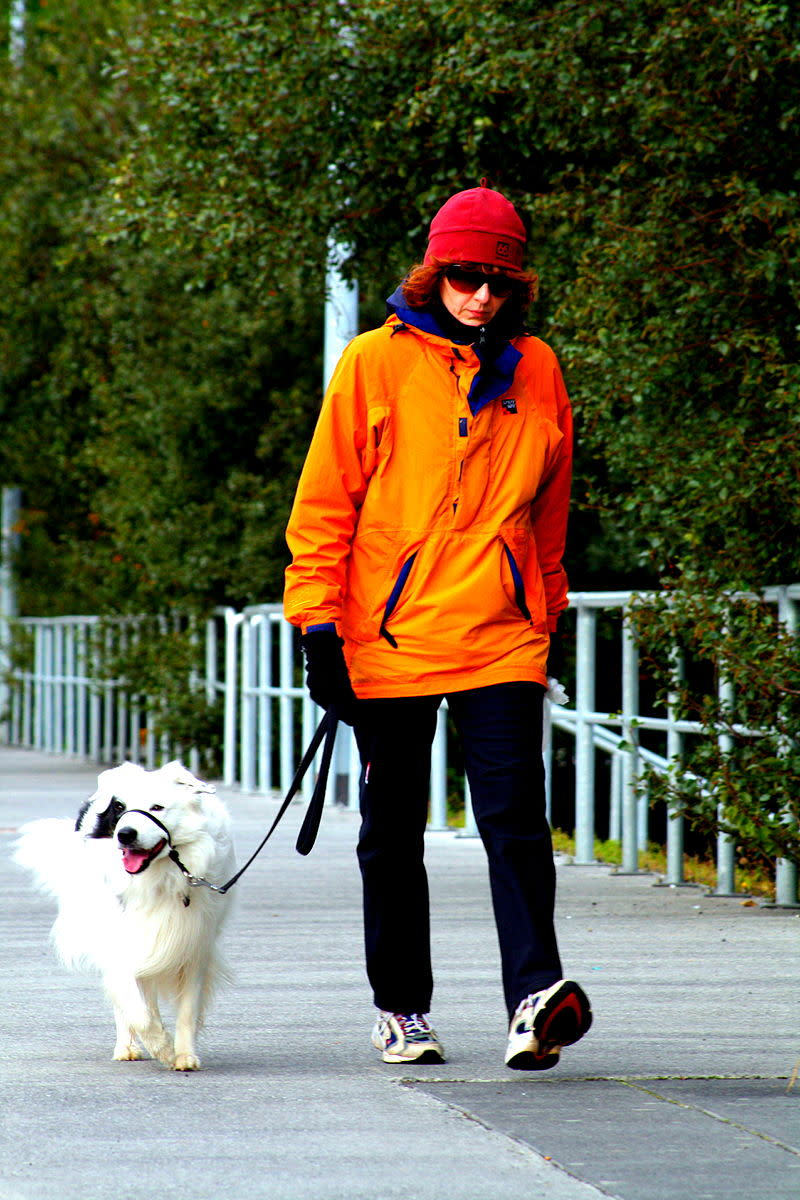 Choosing the right collar and leash for you and your dog helps make exercise and training easier for both of you