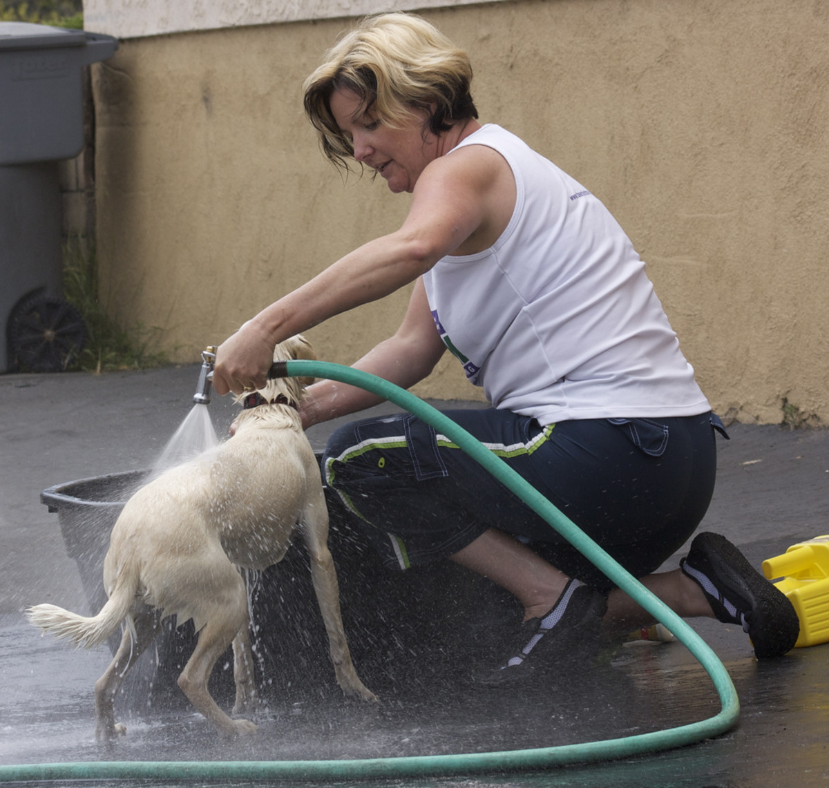 Bathing your dog can be a lot of work but is one of the best things you can do for itching.
