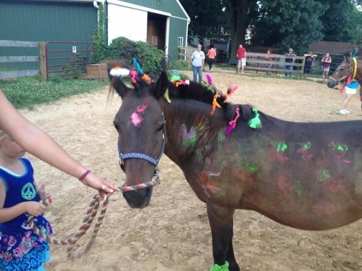 Horses hate summer camp, now you know why!
