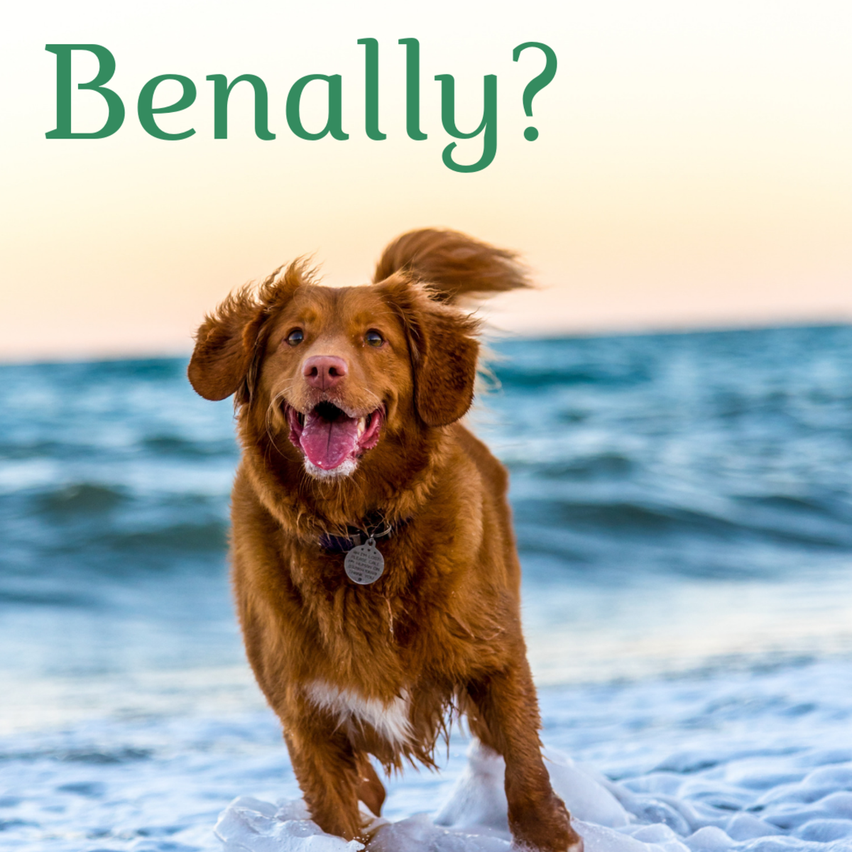 Benally