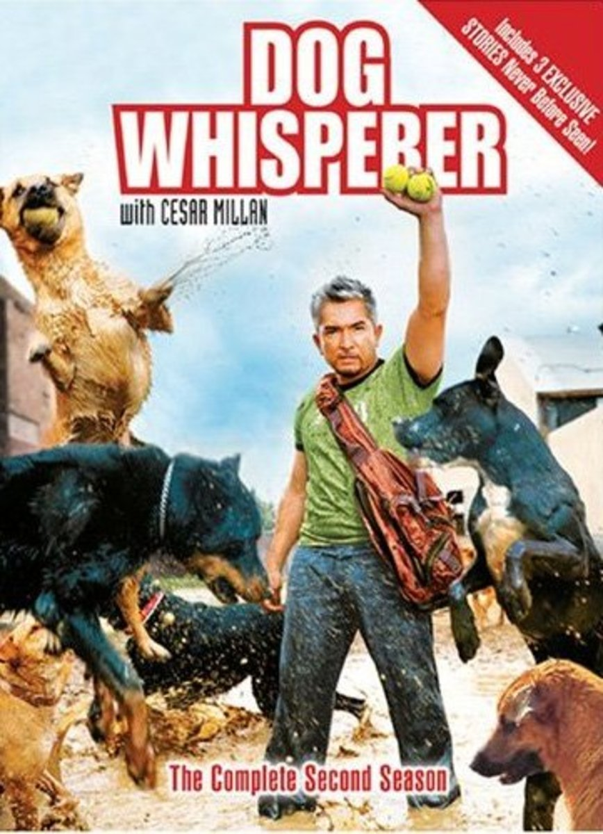 Dog Whisperer With Cesar Millan: The Complete Second Season.