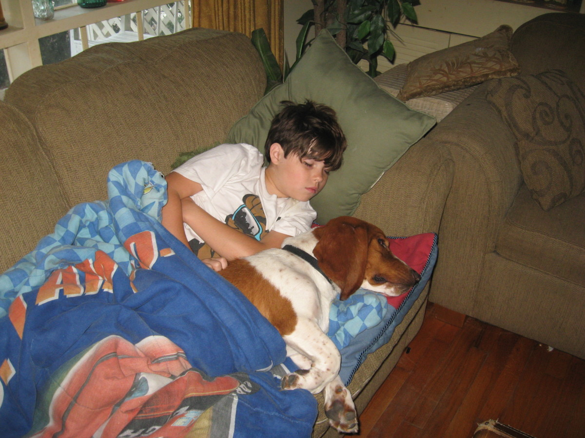 Sparky plays nurse when one of the grandkids is sick.