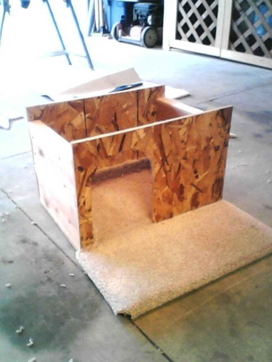 House framework set on the carpeted base