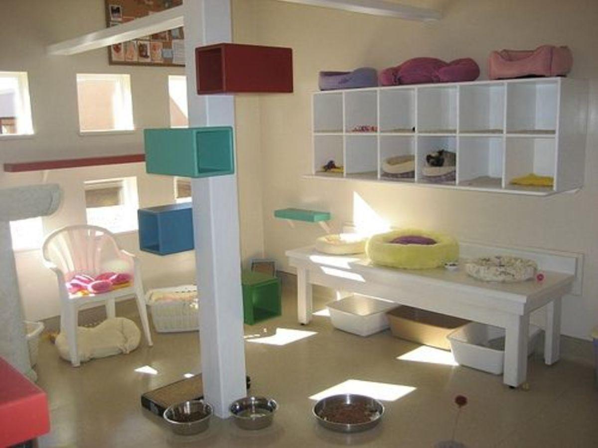 Kitty Cat Playroom by mi2starsfan
