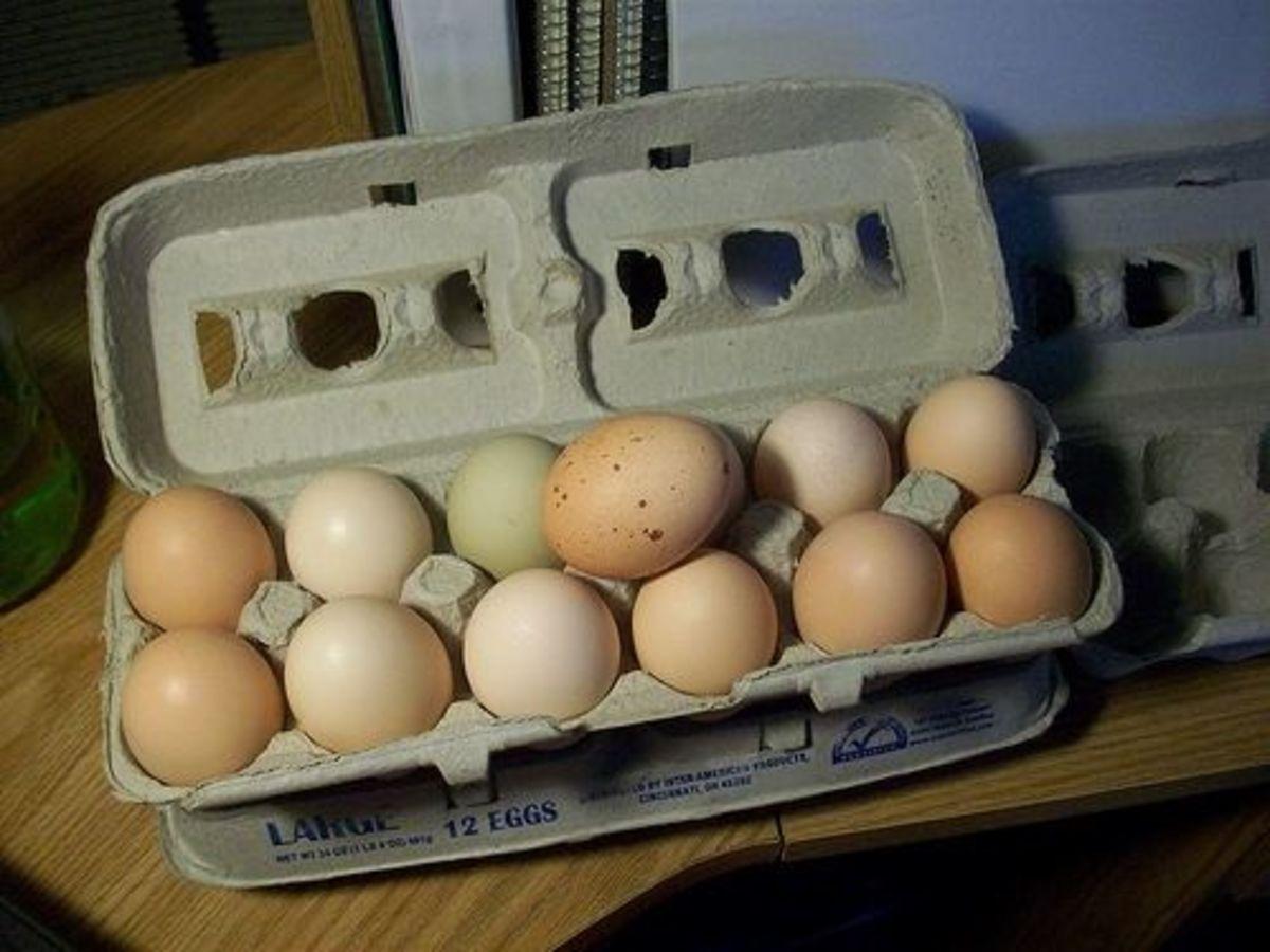 Multi-colored eggs