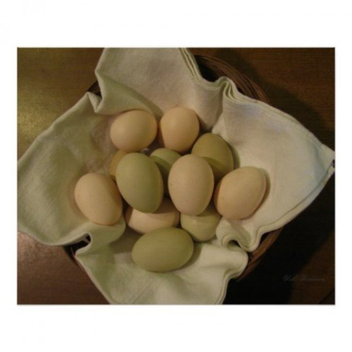 Seven beautiful and healthy Ameraucana (Easter Egg chicken) eggs.