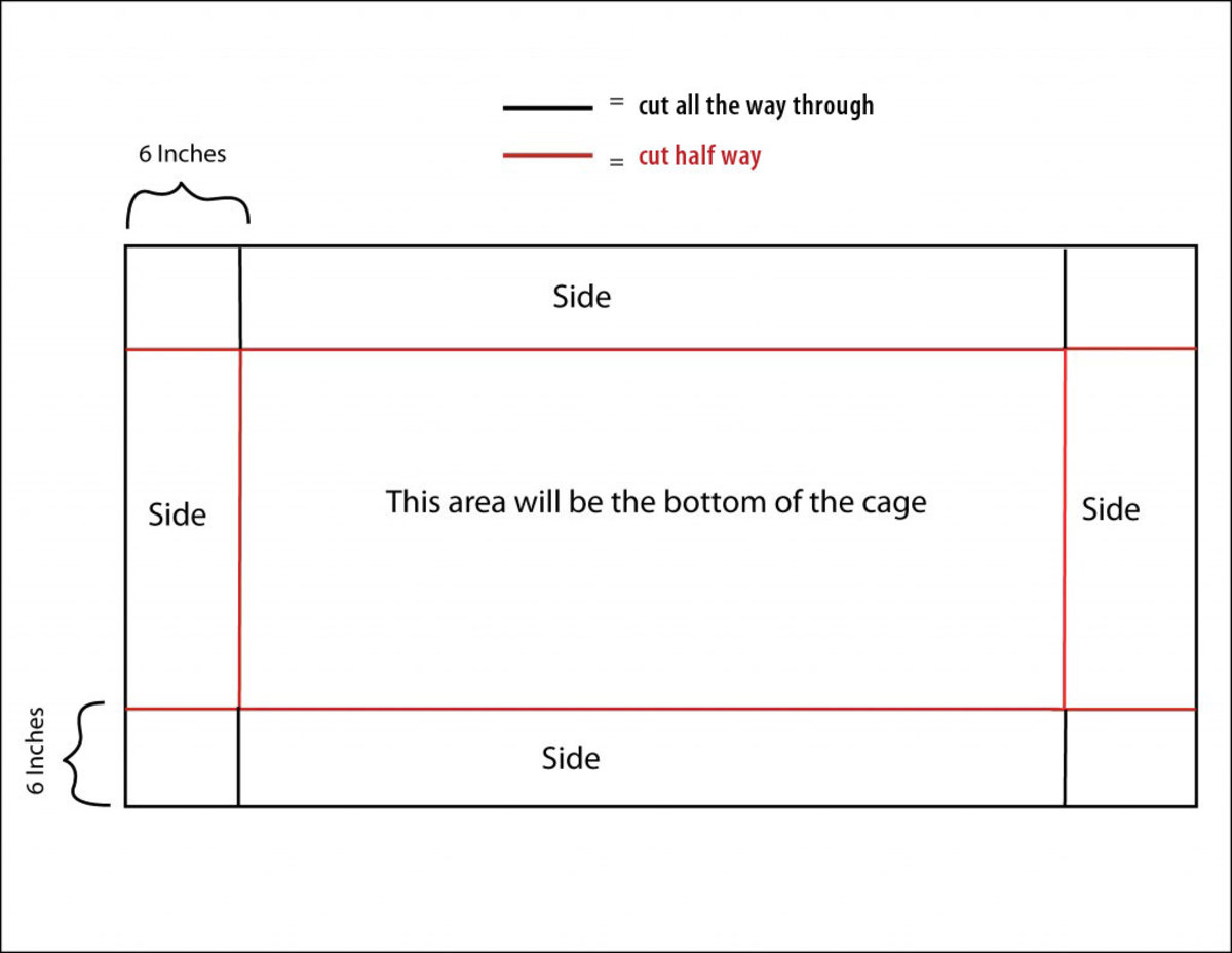 Click to enlarge. Cut red lines only through first layer of coroplast. Cut black lines all the way through the sheet.