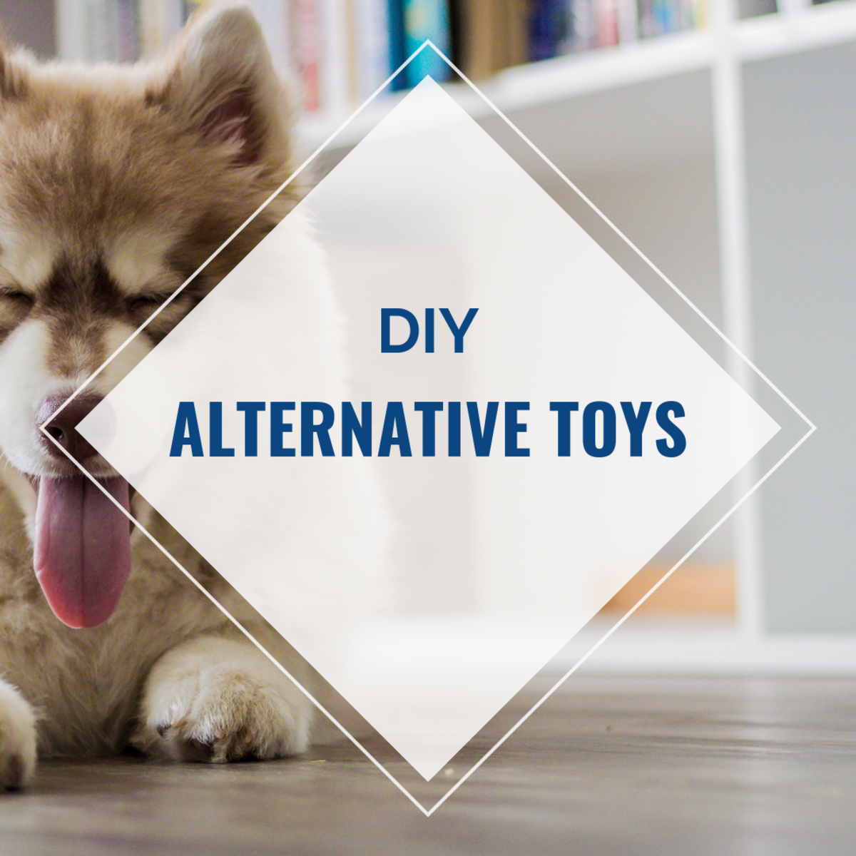 DIY Alternative Toys