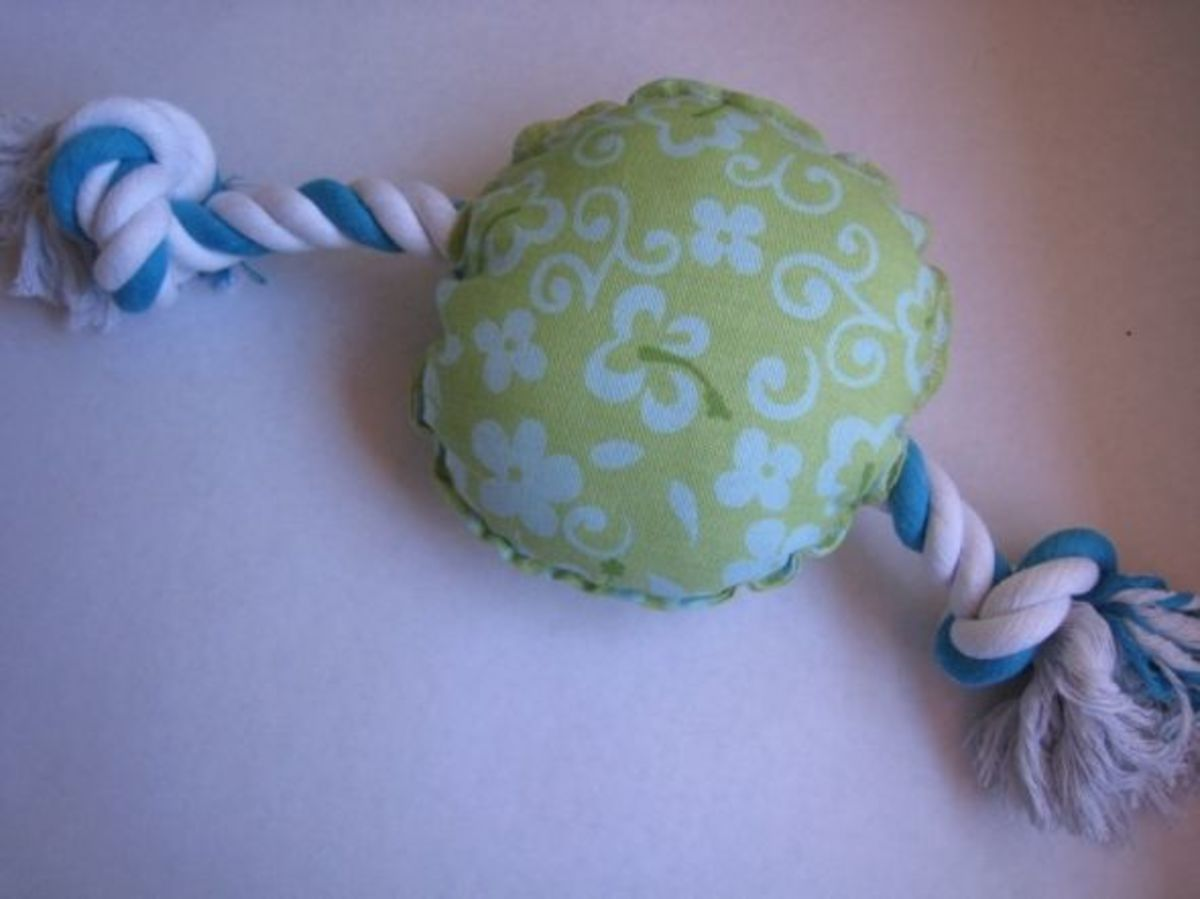 Stuffed Toy and Rope Dog Toy