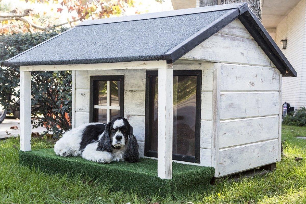 Stylish  Dog House