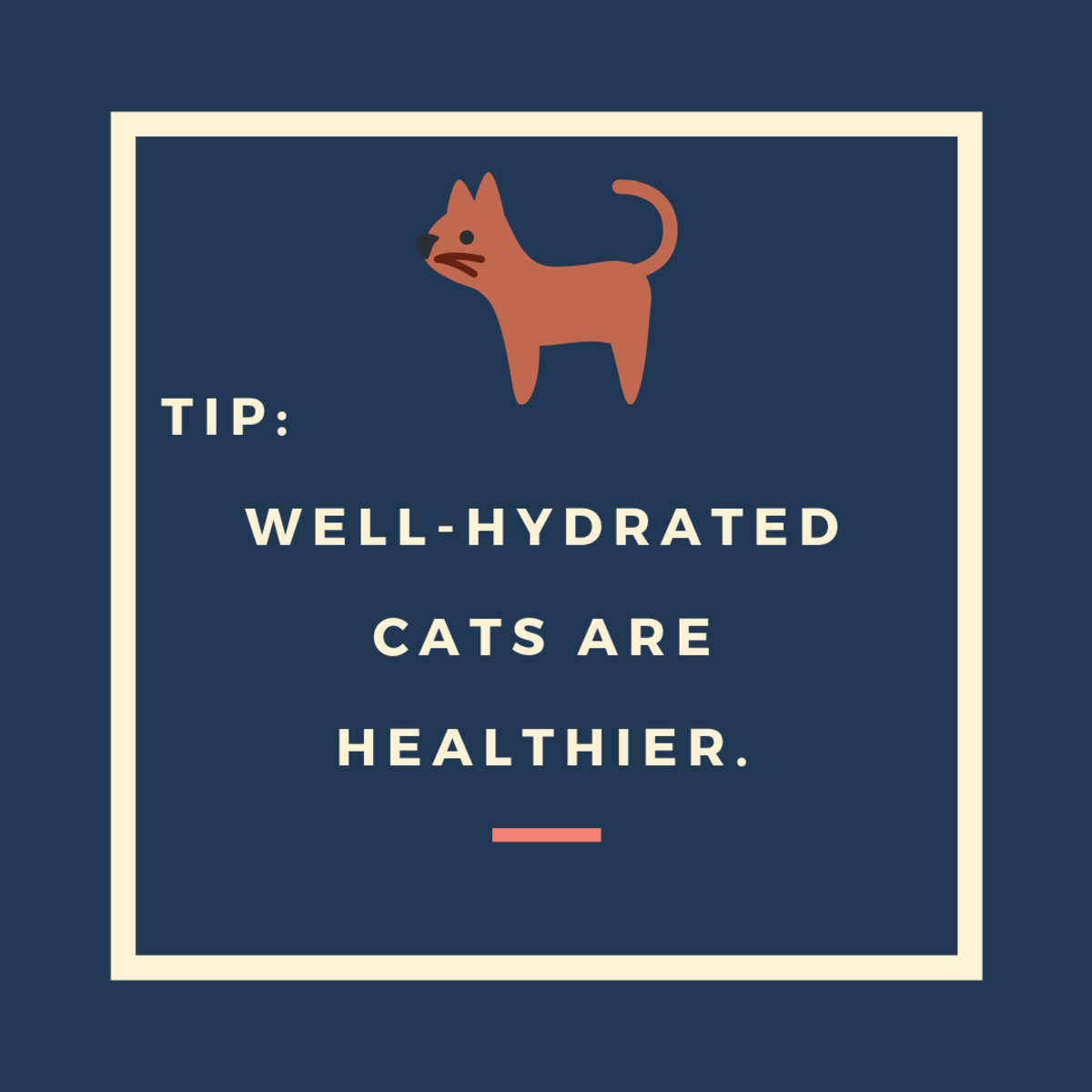 Keep Your Cat Hydrated
