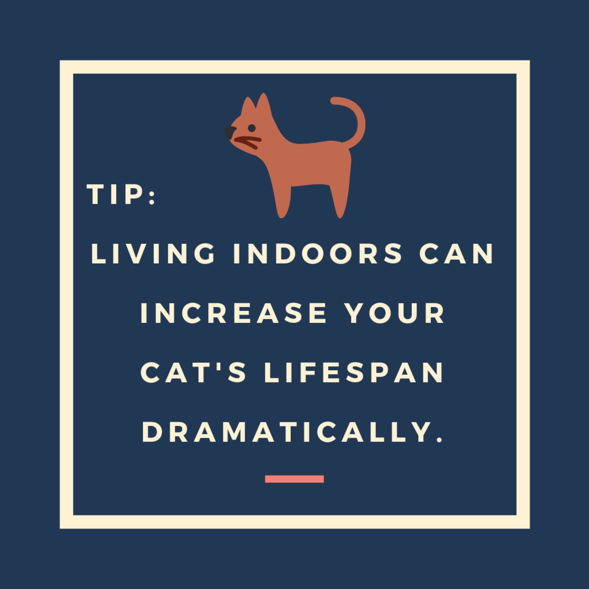 Keep Cats Indoors Only