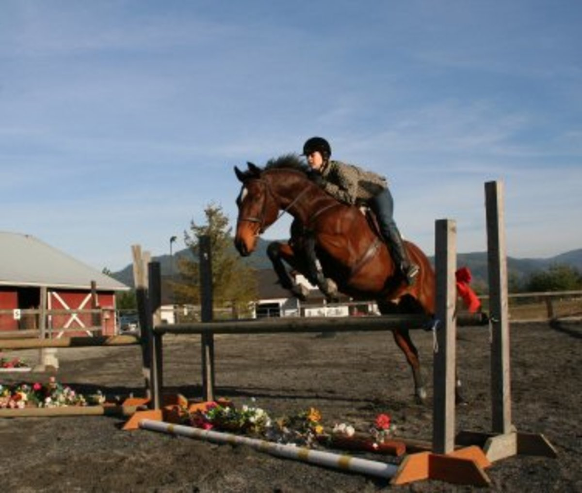English-style riders often jump horses in an arena.