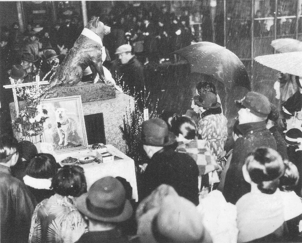 One anniversary of Hachiko (March 8, 1936)