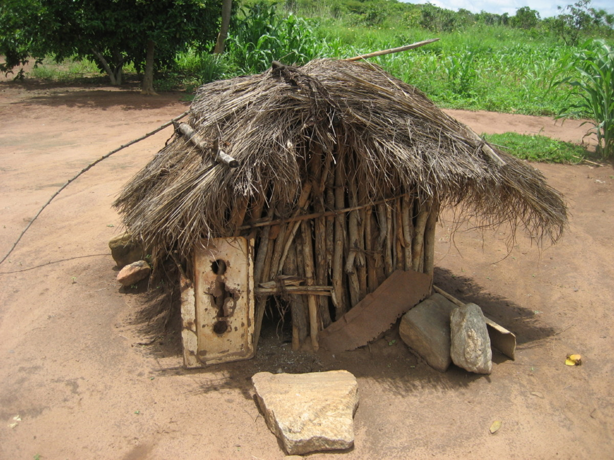 Mozambique chicken coop