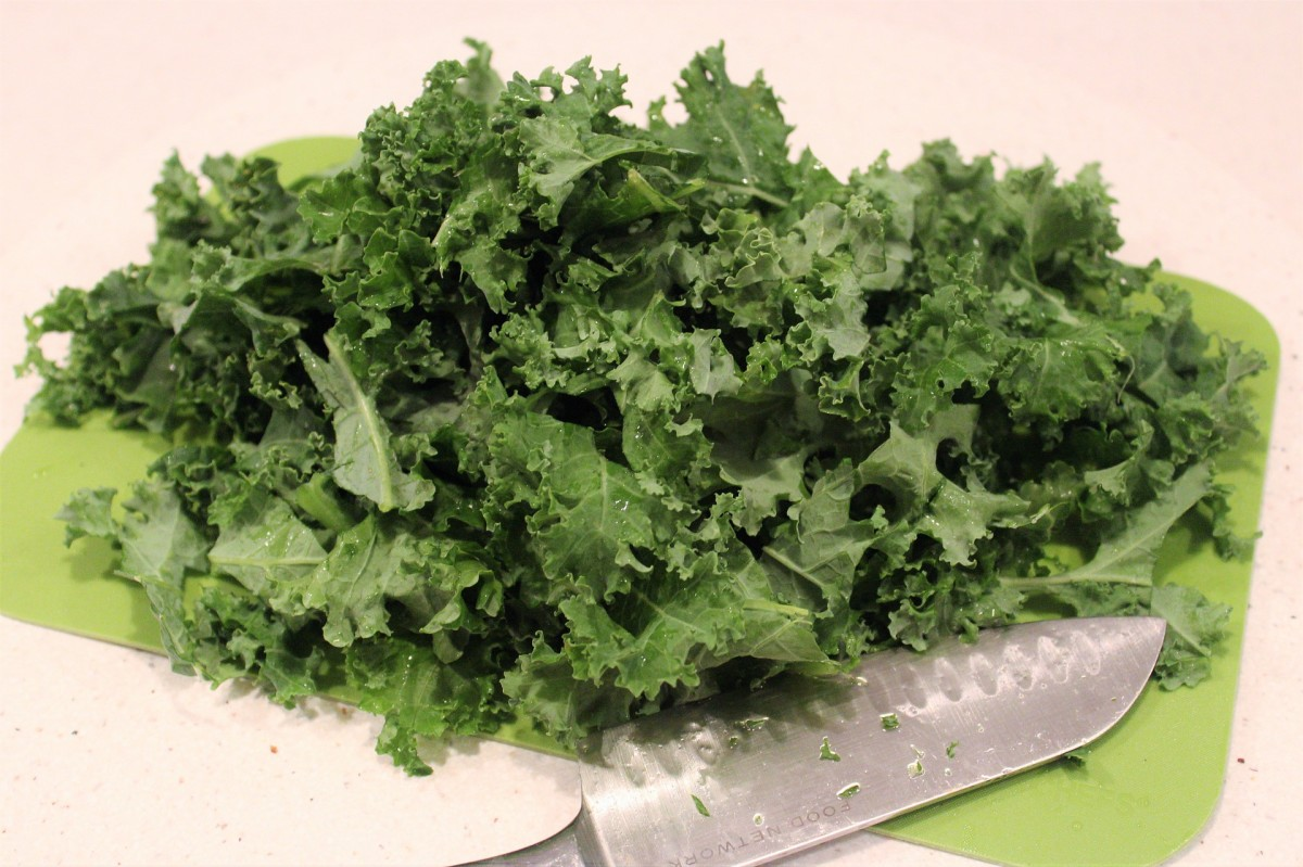 Chopped kale is recommended for baby, juvenile, and adult bearded dragons.