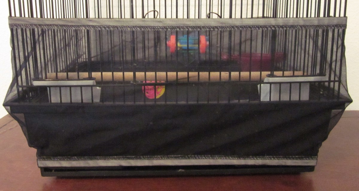 Use a cage skirt to keep your budgie's mess inside the cage.