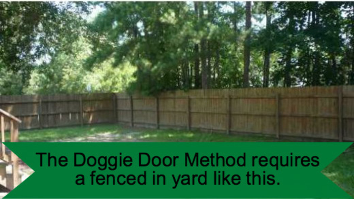 You'll need a fully fenced yard if you want to use the doggie door method.