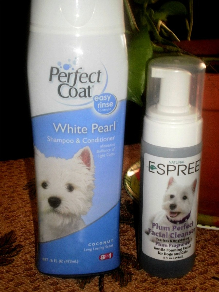 We Love Perfect Coat Shampoo & Conditioner and Espree Facial Cleanser for keeping Sugar Pie clean.