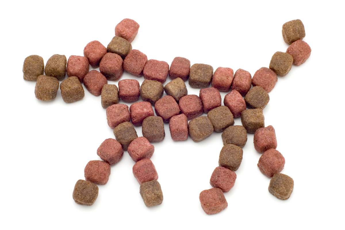 The best dog food is balanced.