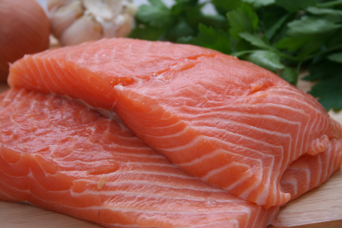 Raw fish doesn't make good dog food.