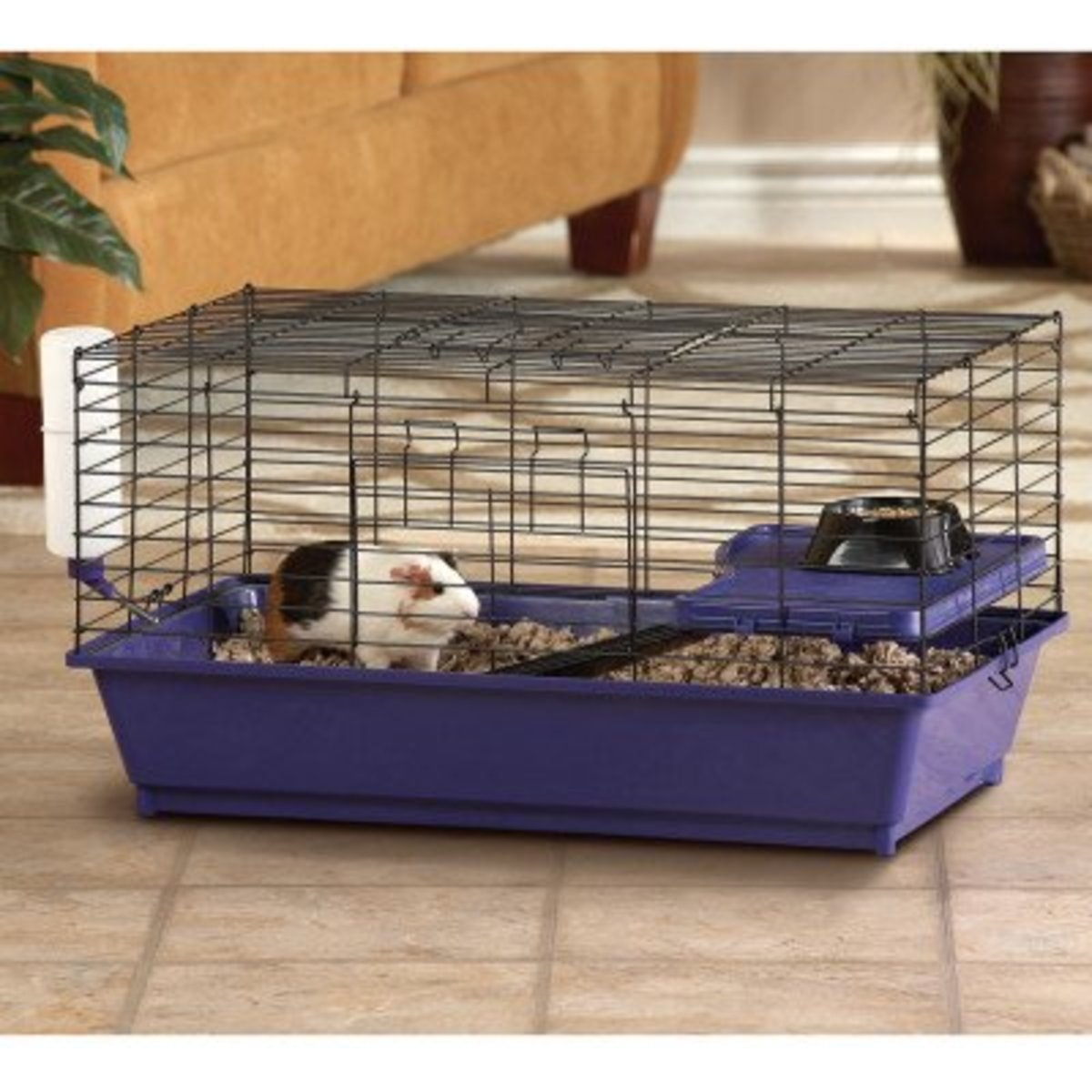 "Petsmart says this cage is a ""perfectly sized home for your guinea pig"". Not only is this cage less than half the size it should be, the $60 you would have spent buying it could have built you a C&C cage in the right size, with cash to spare."