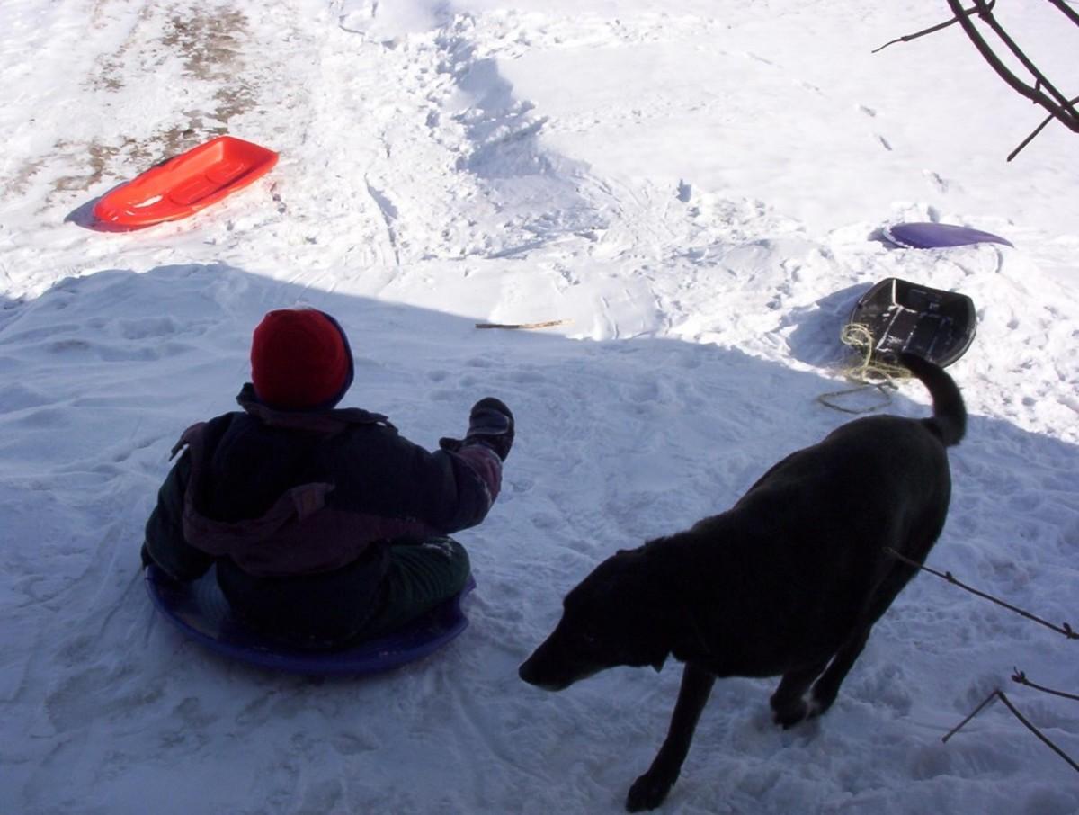 Akila with Jarod having fun in the snow!