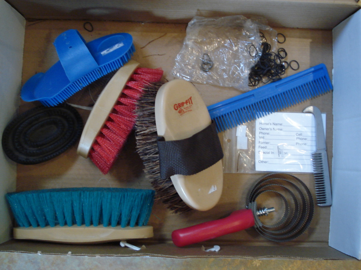 Be sure to disinfect your grooming supplies between use.
