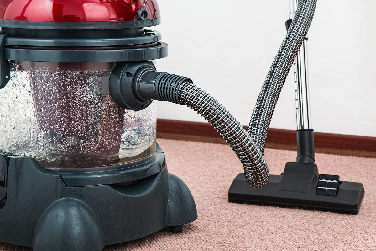 Vacuuming your carpet and furniture is a great way to combat a flea infestation in your home.