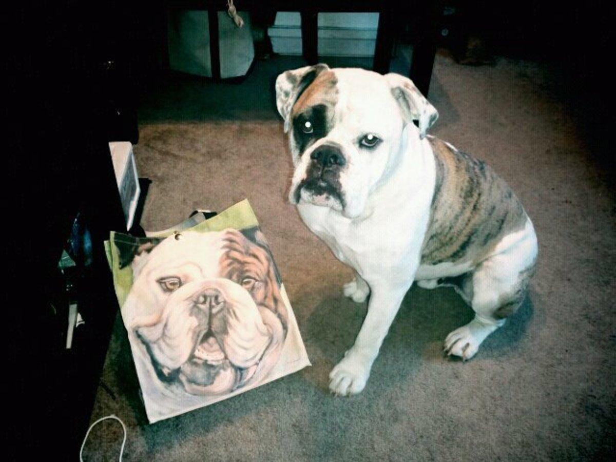 My bulldog, Melman