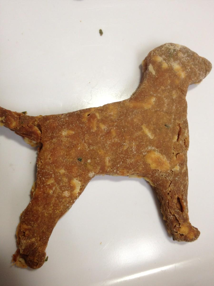 top-10-homemade-dog-treat-recipes