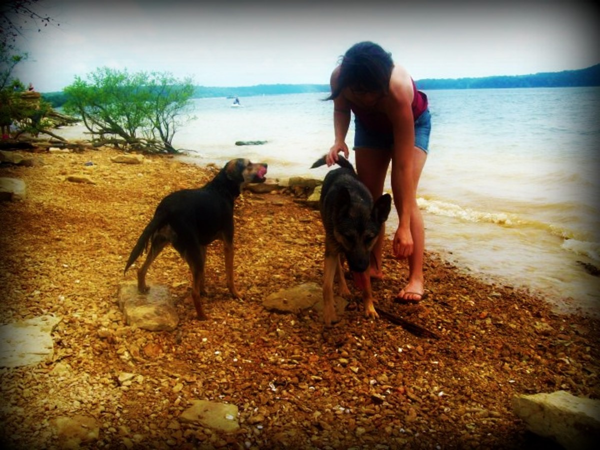Fiona, Penny, and me at the beach.