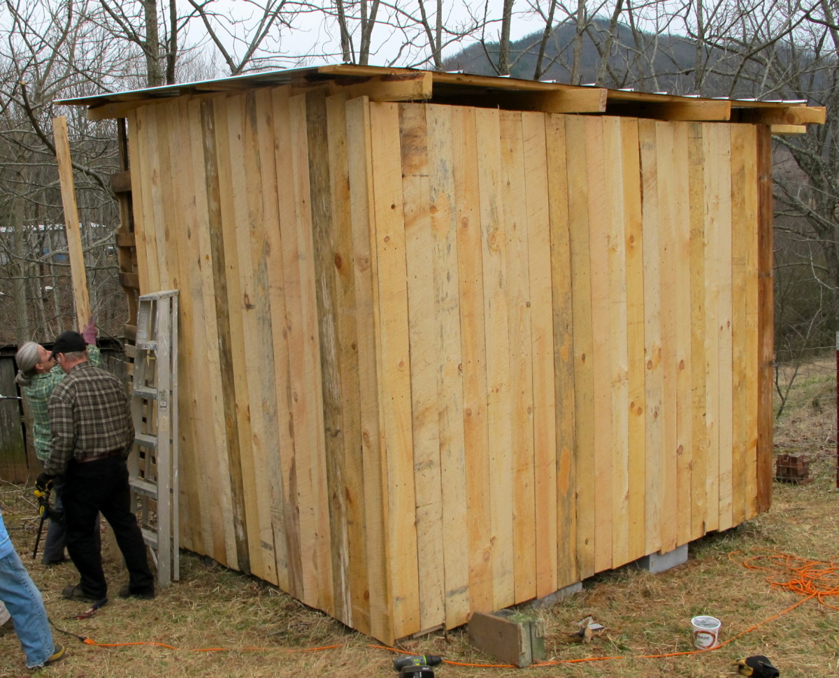 Our three-sided goat shelter ,made out of free pallets and rough-sawn lumber