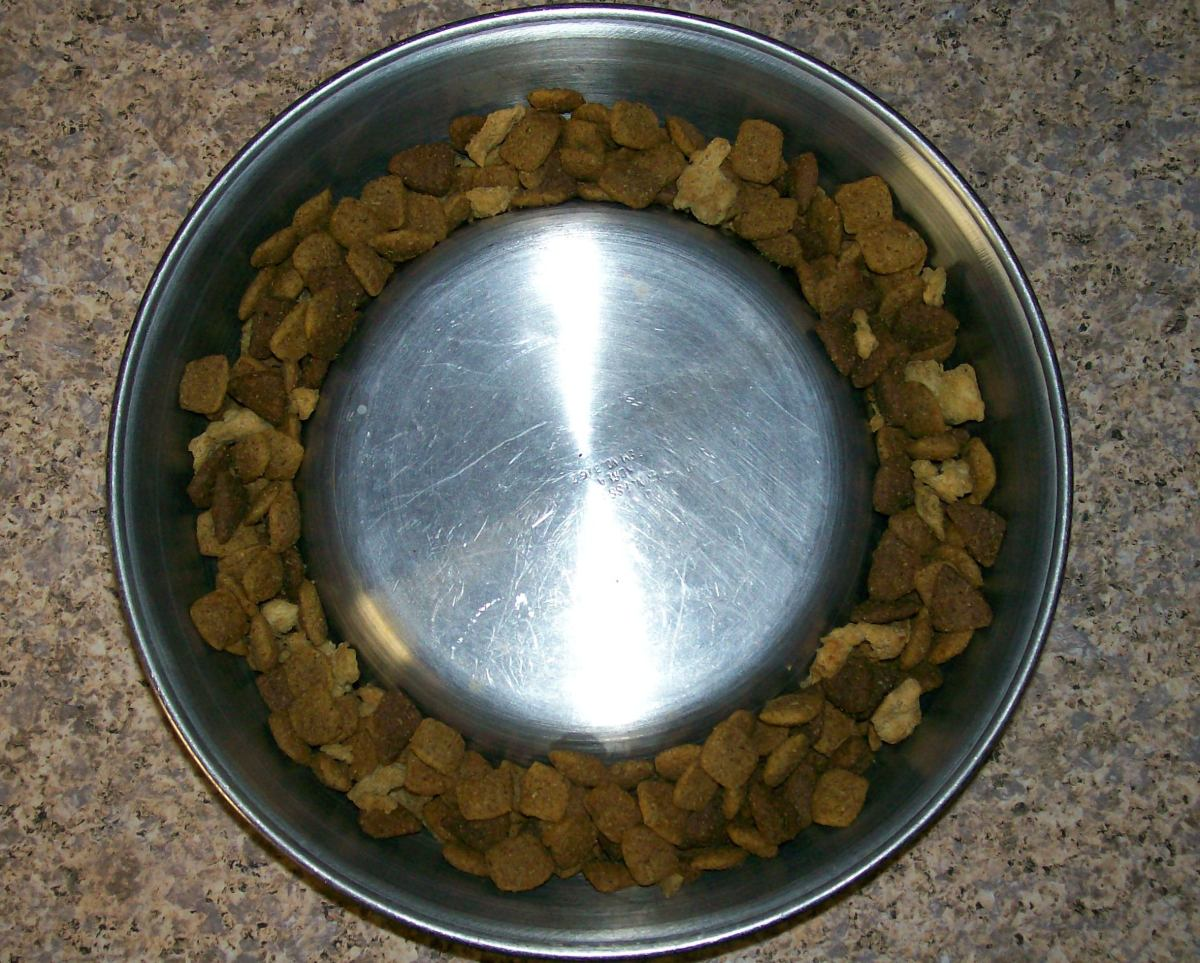Turn a standard dog dish upside down.