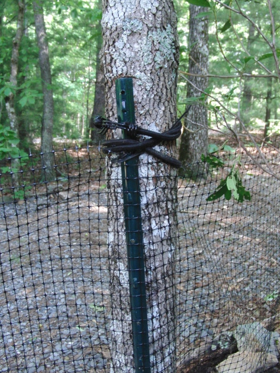 How to build a quick easy and inexpensive dog fence for How to build a cheap fence