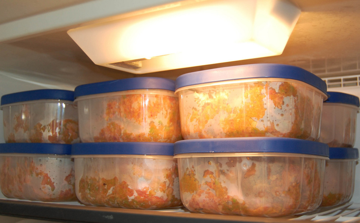 How to store your homemade dog food.